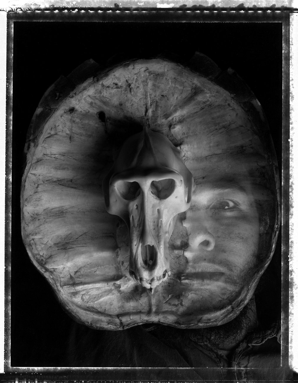 Preview image for Self-Portrait with Baboon Skull